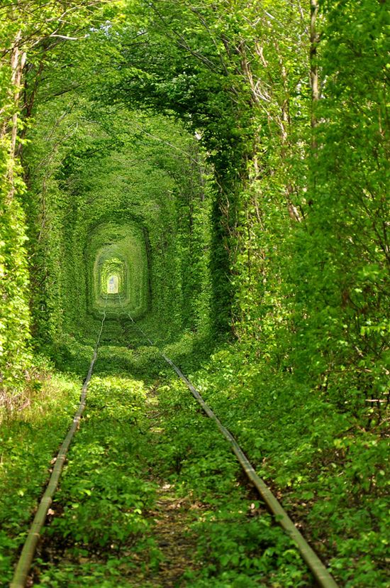 Tunnel-of-Love-in-Ukraine