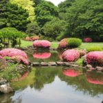 11 Awesome And Outstanding Places To Visit in Japan